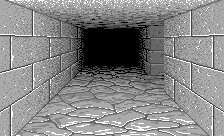 Dungeon View Perspective 1.png
