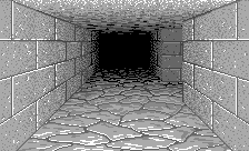 Dungeon View Perspective 2.png