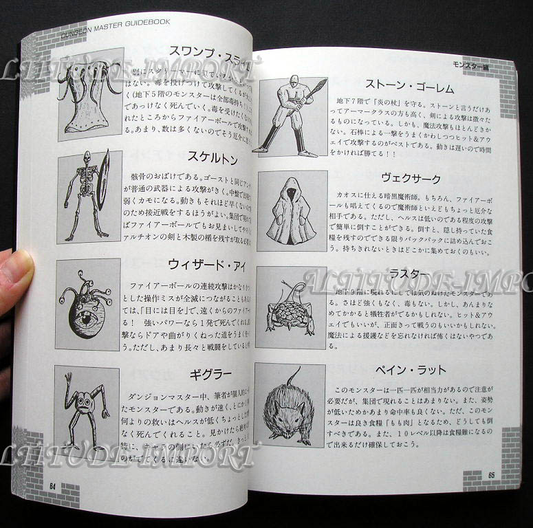 Hint Book - Dungeon Master Guide Book (Japanese) Sample 2