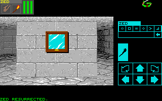 Dungeon Master for PC Screenshot - In game