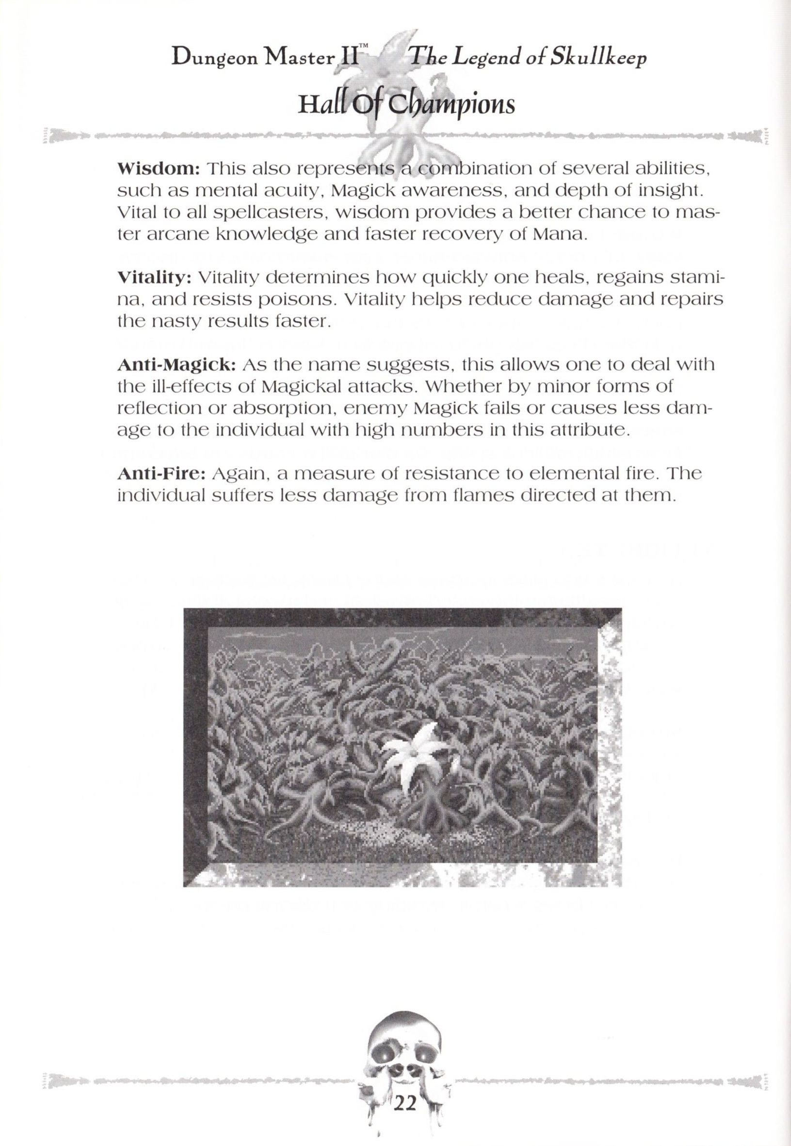 Game - Dungeon Master II - US - Macintosh - Manual - Page 024 - Scan